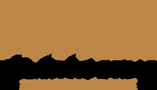 Black Roofing & Waterproofing